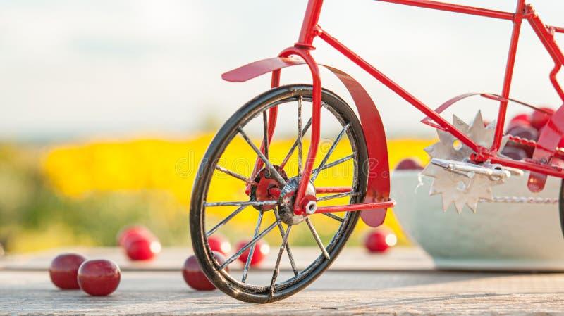 Rotes Fahrrad auf dem Hintergrund der Natur und der Kirsche lizenzfreies stockbild