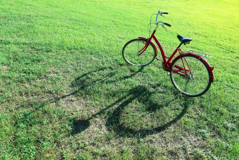 rotes Fahrrad auf grünem Feld und Sonnenschein lizenzfreie stockfotos