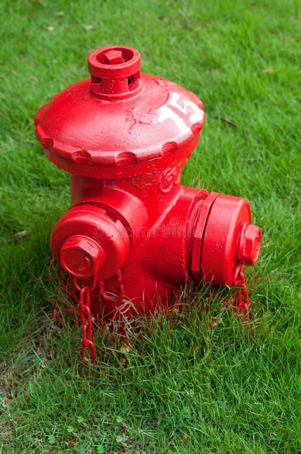 Rotes Feuer-Hydrant lizenzfreie stockbilder