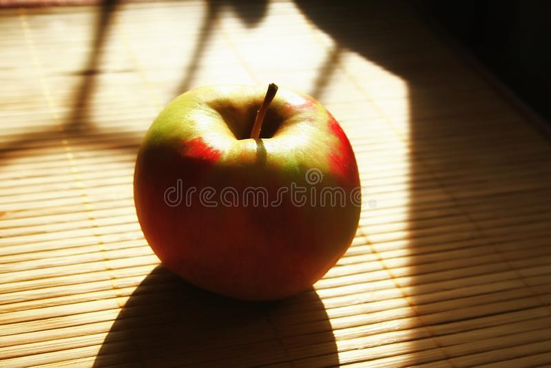 Rotes grünes Apple in den goldenen Strahlen der Sonne lizenzfreie stockfotografie