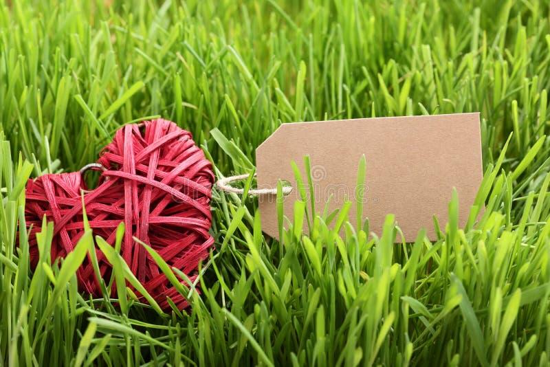 Rotes Herz im Gras stockfoto