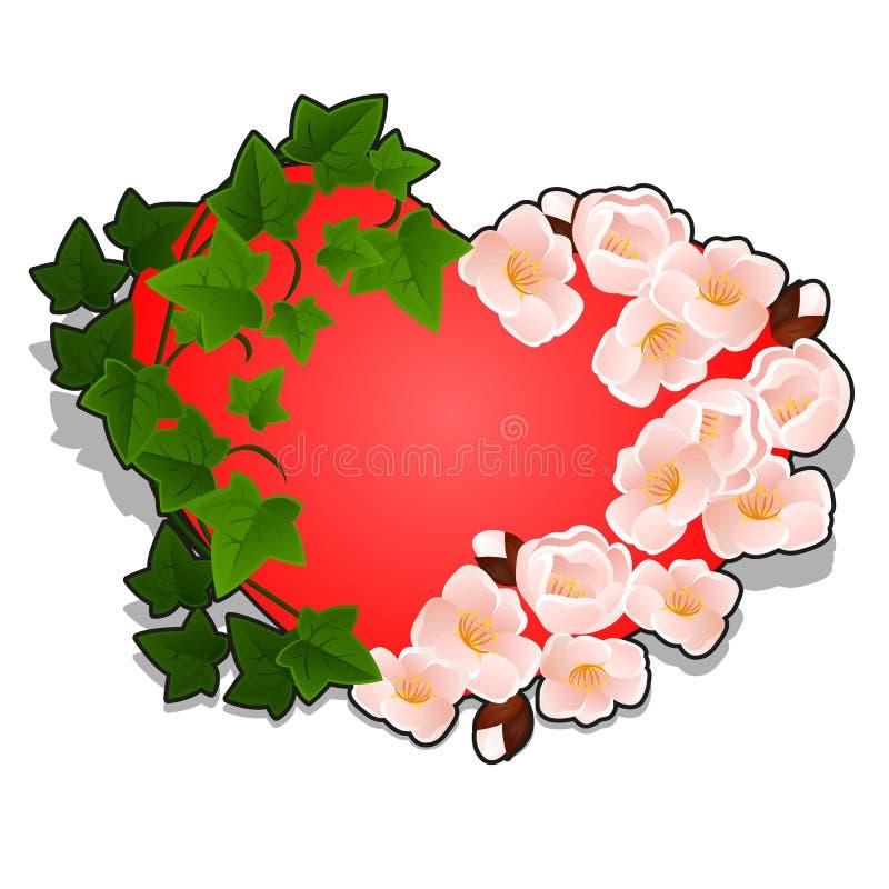 Rotes Herz verziert mit den Kirschblüten und Efeublättern lokalisiert auf weißem Hintergrund Vektorkarikaturnahaufnahme lizenzfreie abbildung