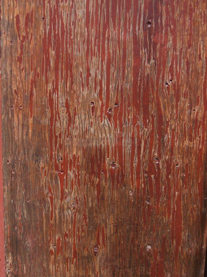 Rotes Holz stockfotos