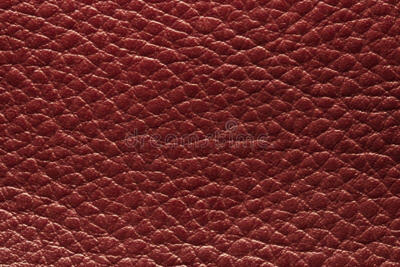 Rotes Leder lizenzfreie stockfotografie