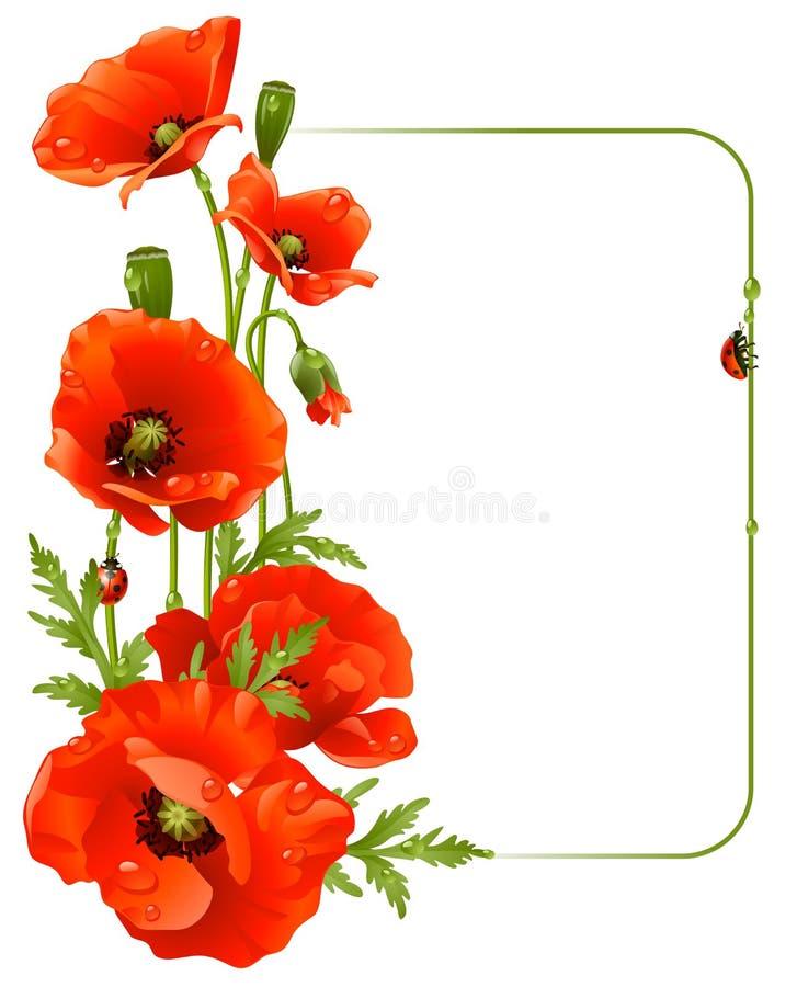 Rotes Mohnblumefeld stock abbildung