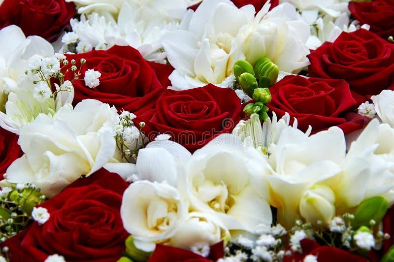 rotes Weiß des Hochzeitsblumenstraußes lizenzfreie stockbilder