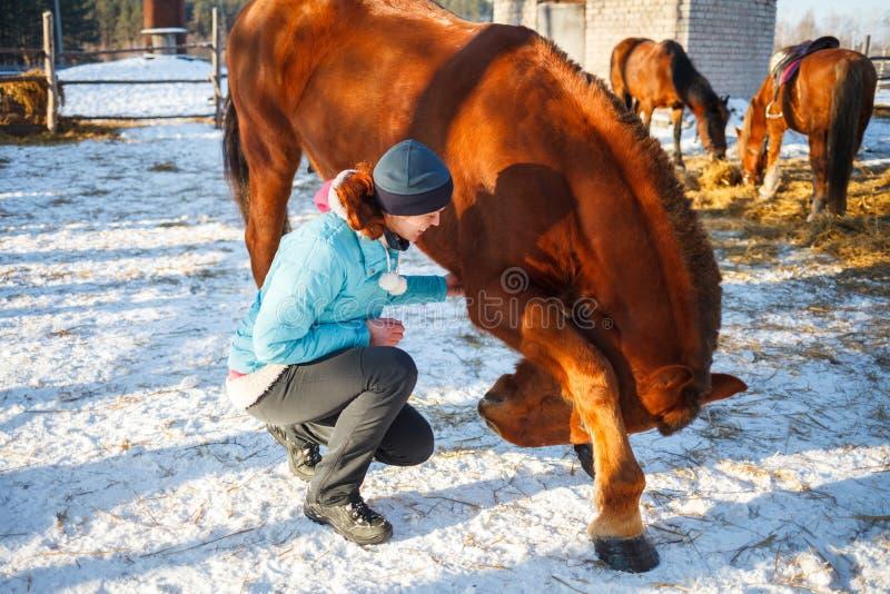 Rothaarige-Mädchen unterrichtete ein rotes Pferd zu schwören und zu tanzen stockfotos