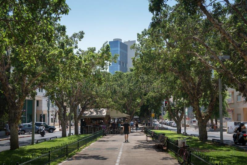 Rothschild blvd i Tel Aviv arkivfoto