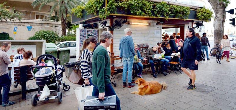 Rothschild boulevard i Tel Aviv - Israe royaltyfria bilder