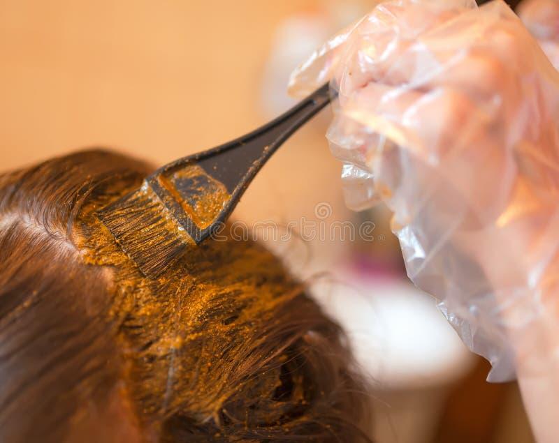 Rotina da beleza do cabelo da coloração com hena natural fotografia de stock royalty free