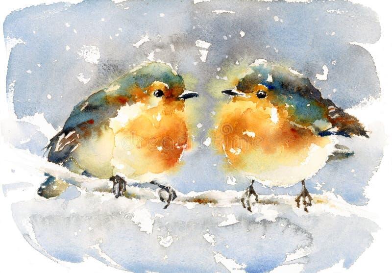 Rotkehlchen-Aquarell-Winter-Vogel-Illustration handgemalt vektor abbildung