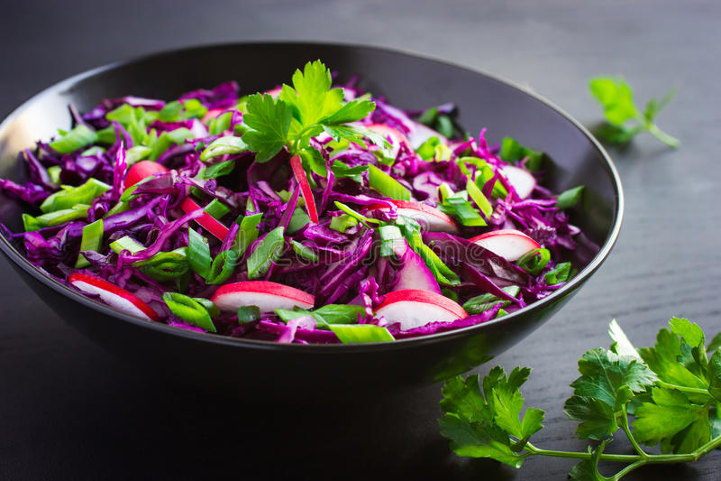 Rotkohl-, Rettich- und Frühlingszwiebelsalat lizenzfreie stockfotos