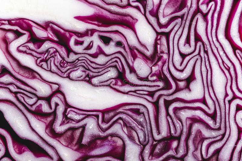 Rotkohlmakrohintergrund Beschaffenheit des geschnittenen Kohls stockbild