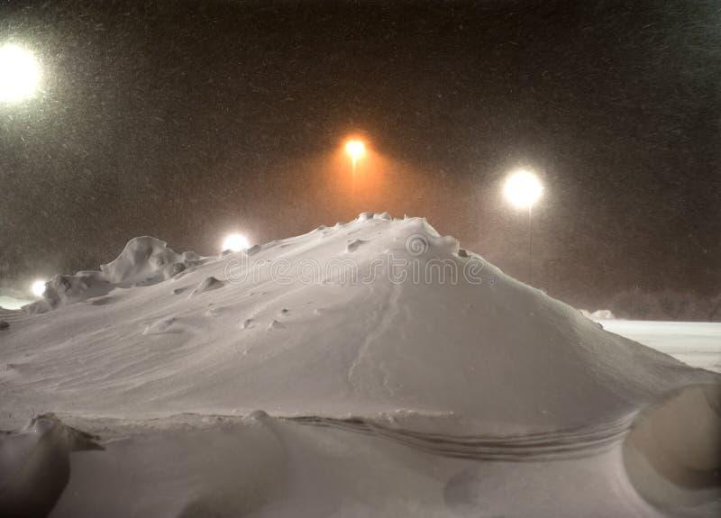 Rotluchs, der Schnee löscht