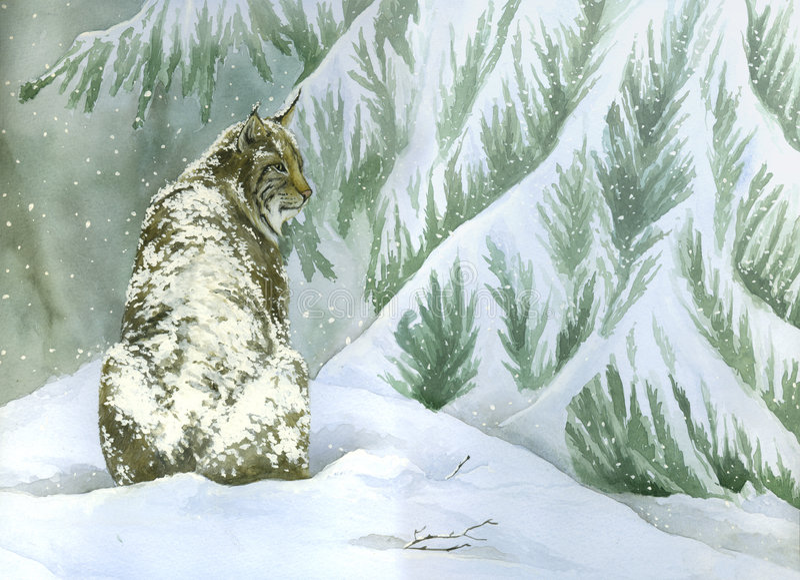 Rotluchs unter dem Schnee Watercolour stock abbildung