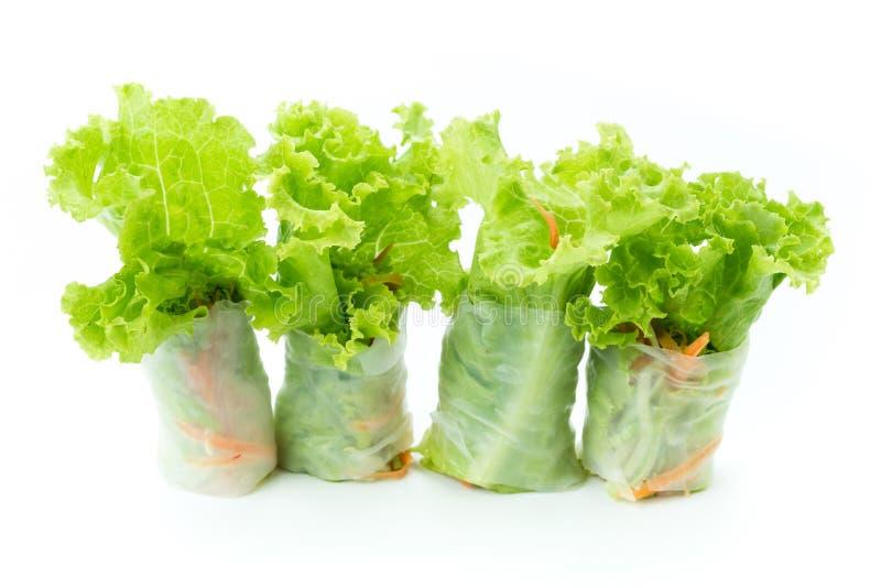 Rotoli dell'insalata fotografie stock libere da diritti