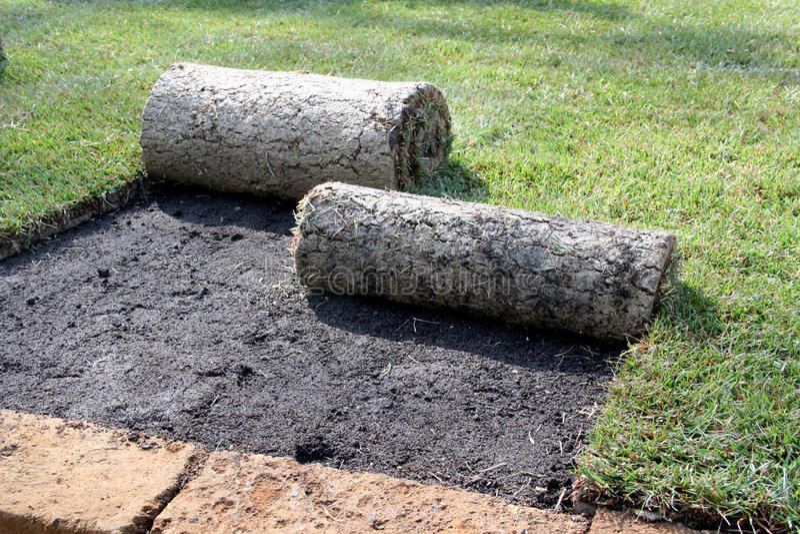 Rotoli di tappeto erboso immagine stock immagine di for Tappeto erboso prezzi