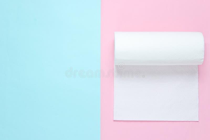 Rotolo degli asciugamani di carta immagini stock libere da diritti