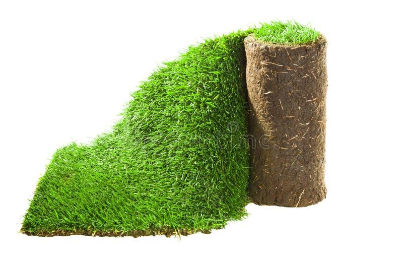 Rotolo del tappeto dell'erba fotografia stock libera da diritti