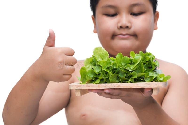 Rotolo dell'insalata sulla mano grassa del ragazzo isolata fotografie stock libere da diritti