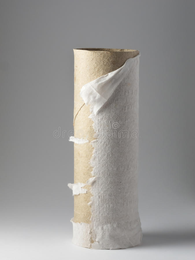 Rotolo di carta igienica vuoto immagine stock libera da diritti