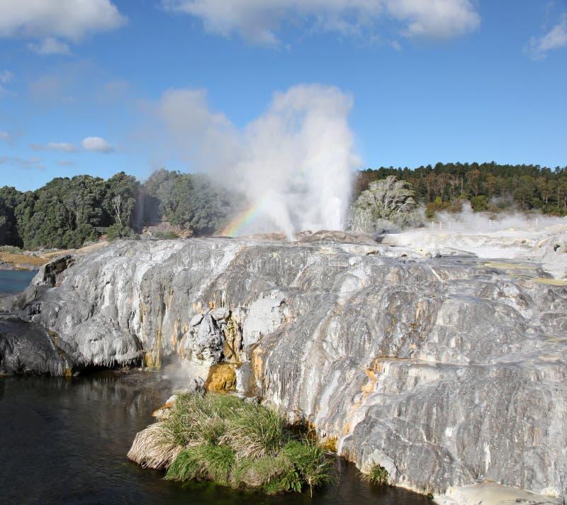 Rotorua - Νέα Ζηλανδία στοκ φωτογραφίες
