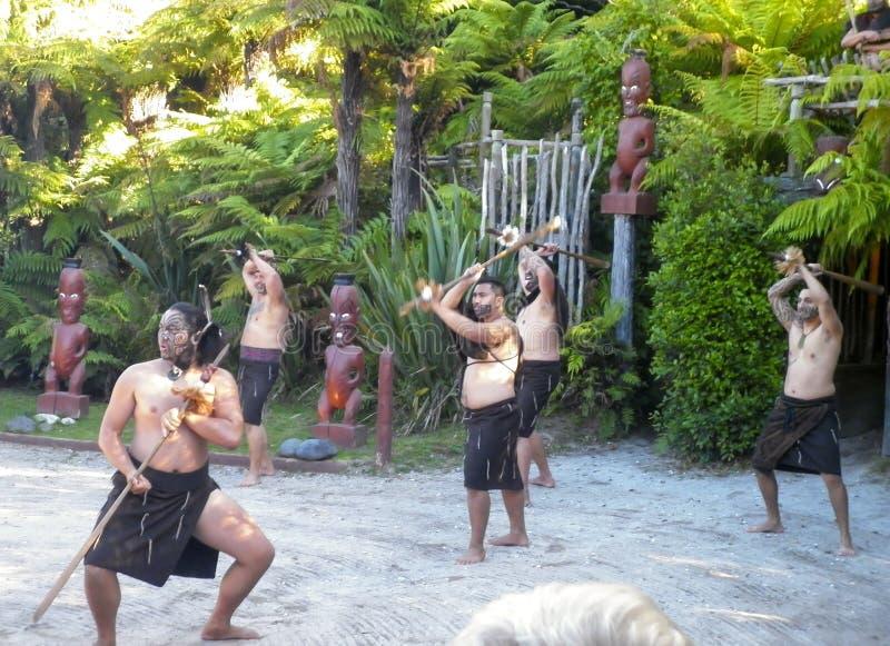 ROTORUA, ΝΕΑ ΖΗΛΑΝΔΊΑ - το Δεκέμβριο του 2014 - οι Maori πολεμιστές εκτελούν το χορό Haka στοκ εικόνες