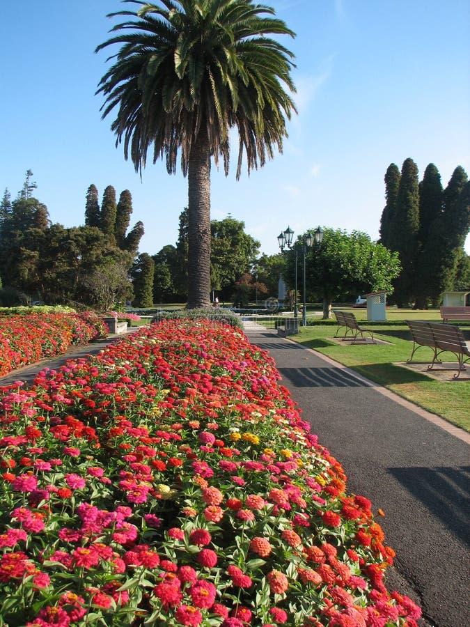 Rotorua Botanical Gardens royalty free stock images