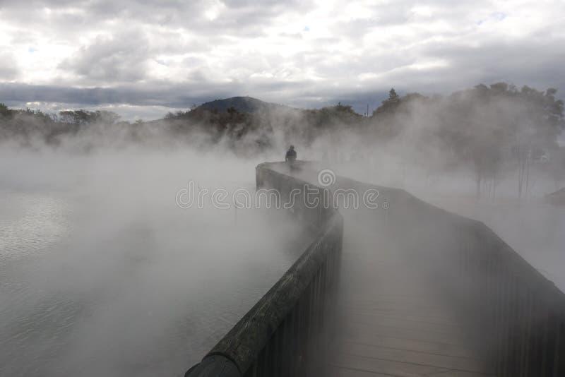 Rotorua-Frühlinge lizenzfreie stockfotos