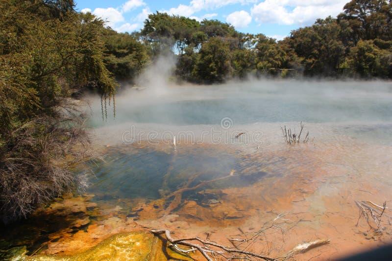 Rotorua, lago vulcânico fotos de stock royalty free