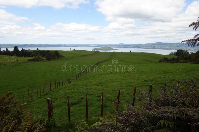 Rotorua-Landschaft stockbild