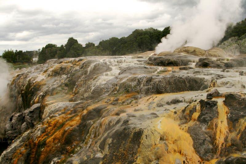 Rotorua Nieuw Zeeland stock afbeeldingen