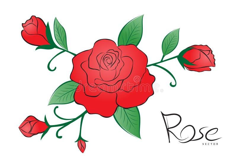 Rotrosen-Vektorillustration Weinleseblumenart auf weißem Hintergrund für Valentinsgrußtageskarte, Gewebe, Hochzeitskarte stock abbildung