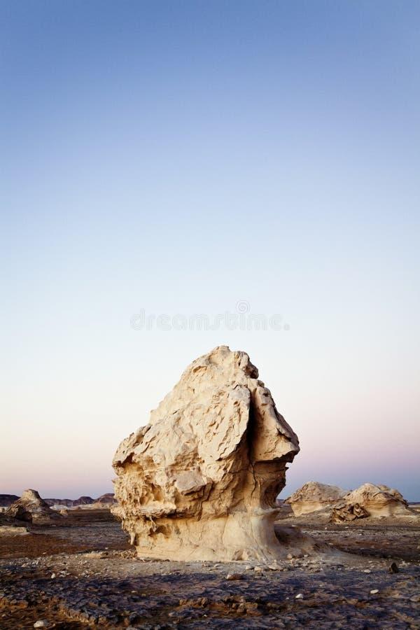 rots bij de witte woestijn stock afbeeldingen