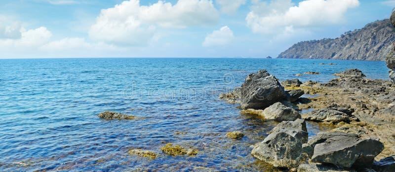 Rots in de Oceaan stock foto