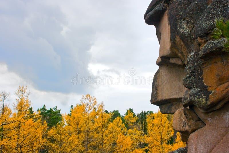 Rots en de herfst stock foto's