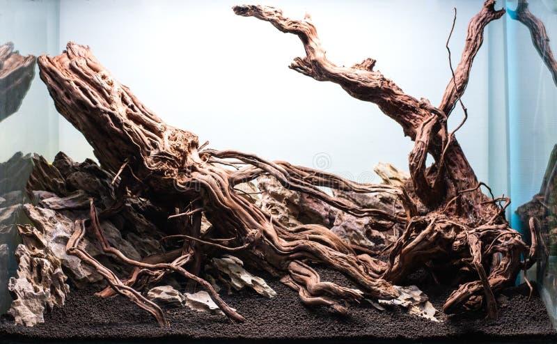 rots en drijfhout hardscape regeling stock afbeelding
