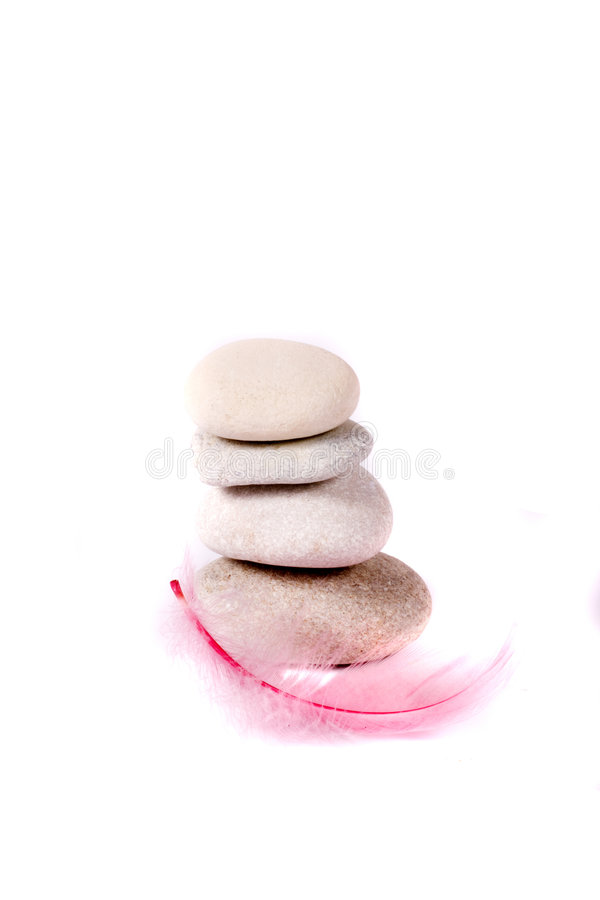 Rots en roze veer stock foto's