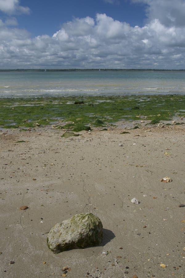 Rots op seaweedy strand die Solent overzien royalty-vrije stock foto