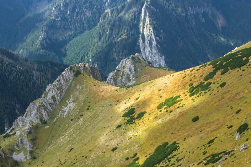 Rots op Tatra-Bergen - Czerwone Wierchy royalty-vrije stock afbeelding