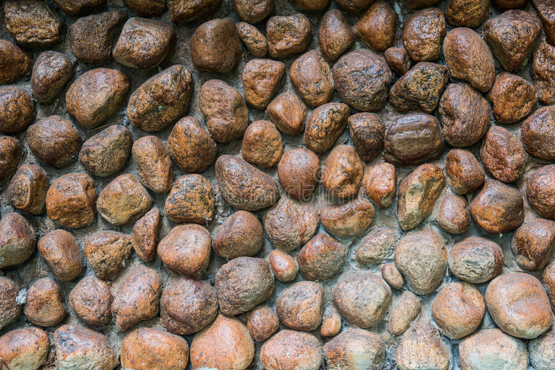 Rots weall stock afbeelding
