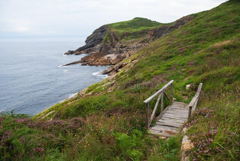 Rotsachtig kustlandschap van een groene weide met een gerecycleerde houten brug royalty-vrije stock fotografie