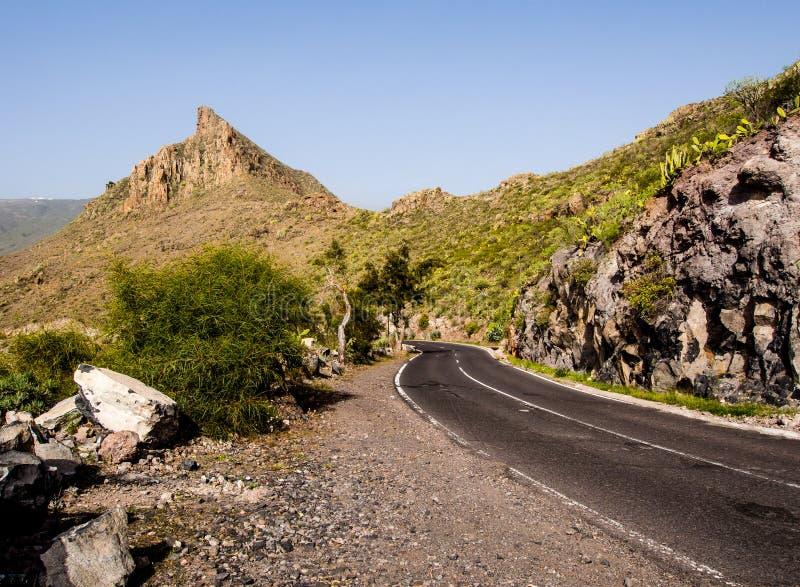 Rotsachtig landschap van Tenerife royalty-vrije stock fotografie