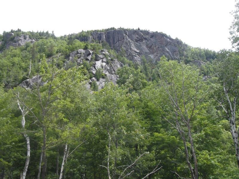 Rotsachtige bedekte berg stock foto's