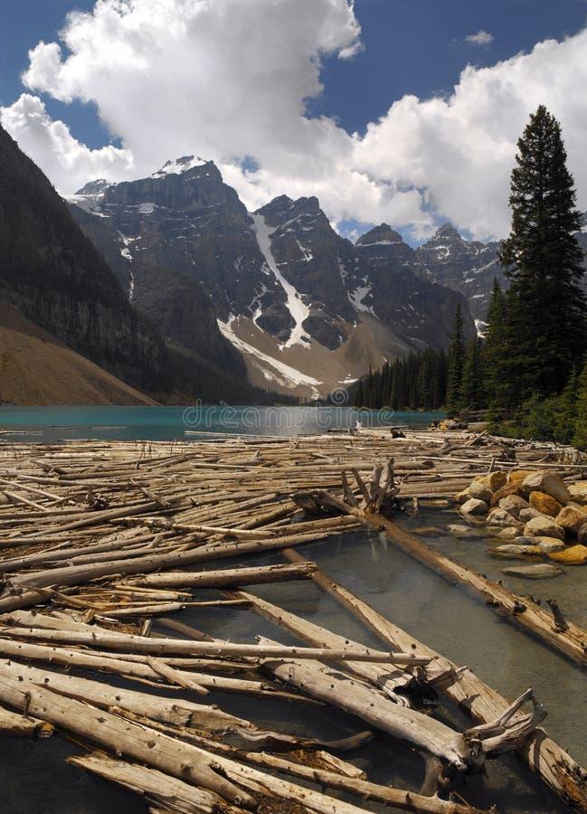 Rotsachtige Bergen - Alberta - Canada stock fotografie