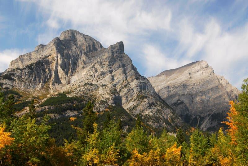 Rotsachtige bergen en bossen stock foto's