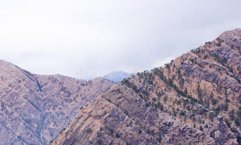 Rotsachtige bergen van Himalayagebergte in Katra, Jammu stock foto's