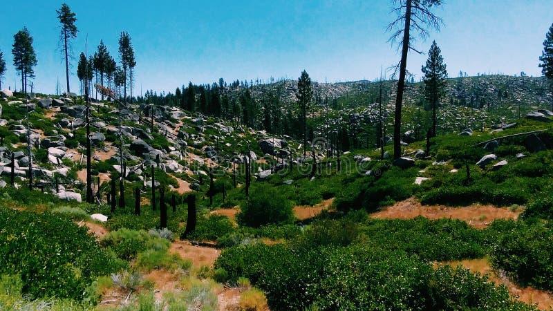 Rotsachtige heuvels stock afbeeldingen