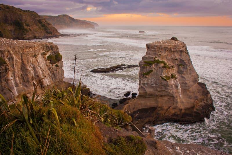 Rotsachtige klippen bij Muriwai-strand, dichtbij Auckland, Nieuw Zeeland royalty-vrije stock foto's