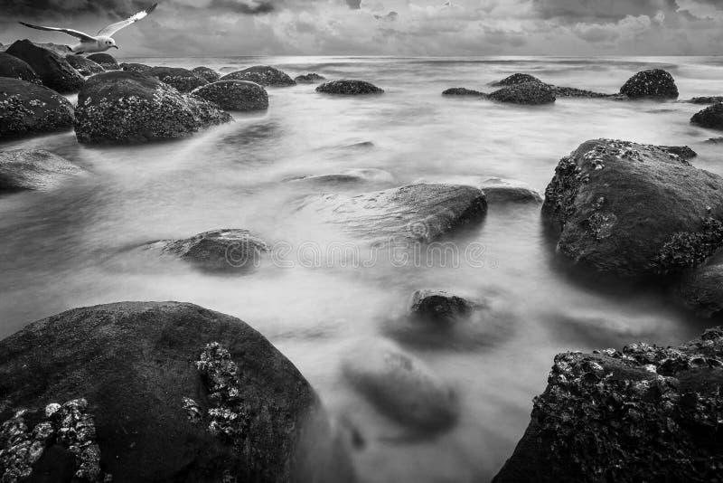 Rotsachtige kust royalty-vrije stock foto